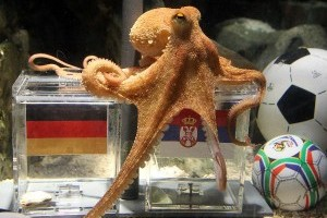Breaking News : Paul The Octopus Retires!