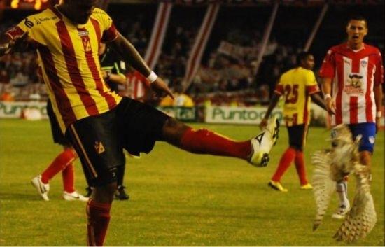 http://totalfootballmadness.com/wp-content/uploads/2011/03/Luis-Moreno-1.jpg